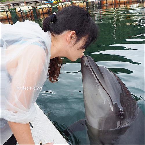 淡路島一日遊:海豚親密互動、鳴門海漩渦、淡路夢舞台海之教堂、吹龍工廠笑翻天 @愛吃鬼芸芸