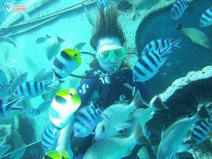 今日熱門文章:關島旅遊.JNS DIVERS GUAM,揹氣瓶潛水初體驗!