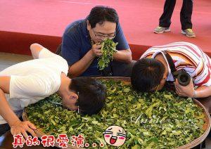 今日熱門文章:茶裏王茶文化故事館@宜蘭傳統藝術中心
