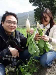 今日熱門文章:台東鹿野.品茗、拔蘿蔔、摘草莓@立榮假期 看見農遊新樂園