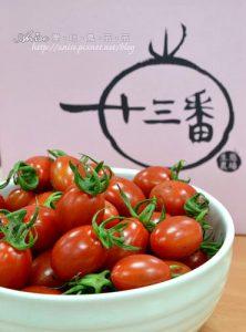 今日熱門文章:十三番生態農場極品玉女番茄,皮薄多汁超甜美!