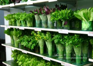 今日熱門文章:辣滷哇蔬菜森林~到底是花店還是滷味店?!