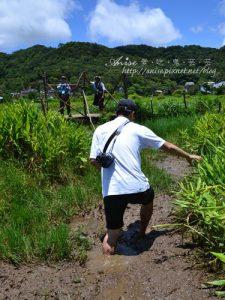 今日熱門文章:牡丹199人文生態走廊之旅~東源溼地水上草原,超刺激的草上飛!