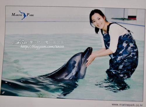濟州島景點.MrinePark海洋公園與海豚親密接觸 @愛吃鬼芸芸