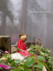 今日熱門文章:溪頭.明山森林會館,誤闖濃霧森林裡的童話世界