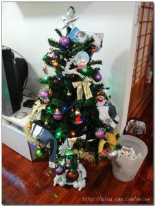 今日熱門文章:插播 98.12.25 阿粉阿姨家歡度耶誕節