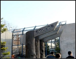 今日熱門文章:北海道餵豬泡湯之旅(22)–旭山動物園(下) + 拉麵村