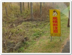 今日熱門文章:北海道餵豬泡湯之旅(6)–釧路市動物園