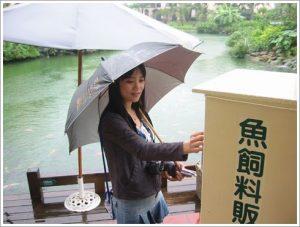 今日熱門文章:95.05.29 雨天早晨遊理想大地(下)