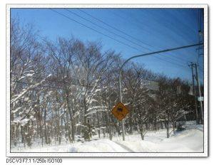 今日熱門文章:北海道冰凍餵豬泡湯之旅(17)–荒狗路+參觀SAPPORO啤酒廠