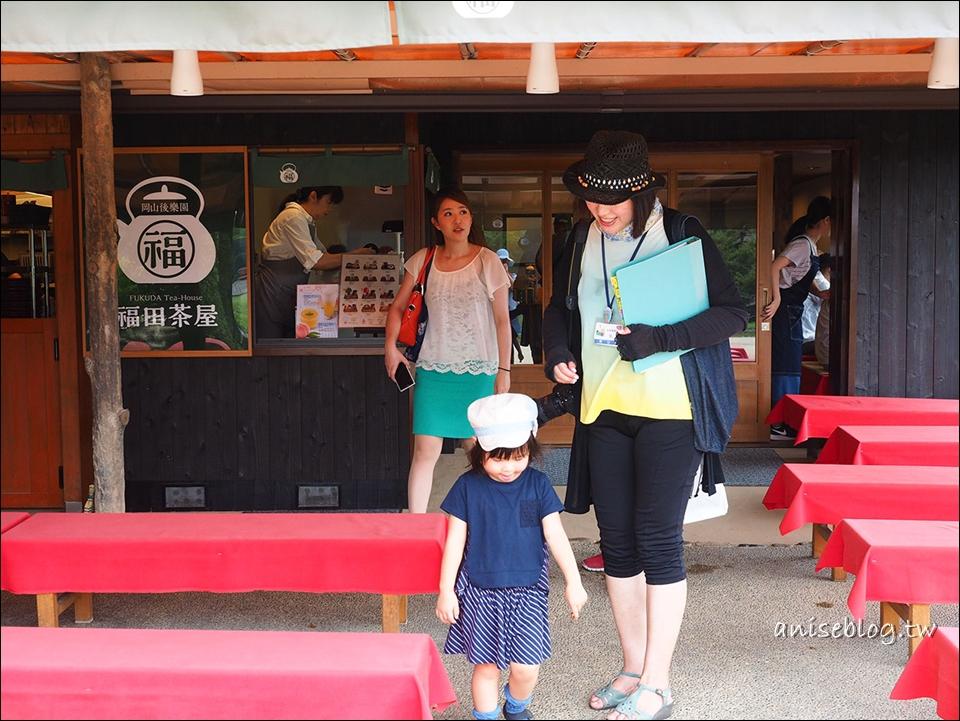 岡山必訪景點:岡山城、岡山後樂園