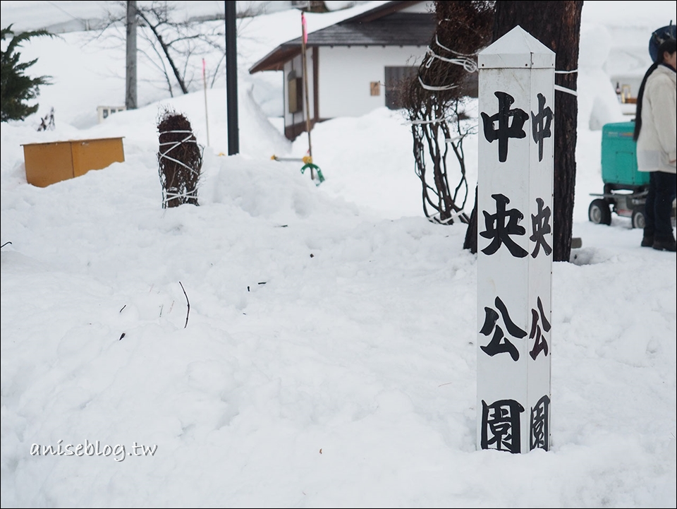 秋田雪犬祭,一年一度的狗狗祈福大會