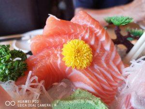 今日熱門文章:東街日本料理 | 桃園無菜單料理千元套餐