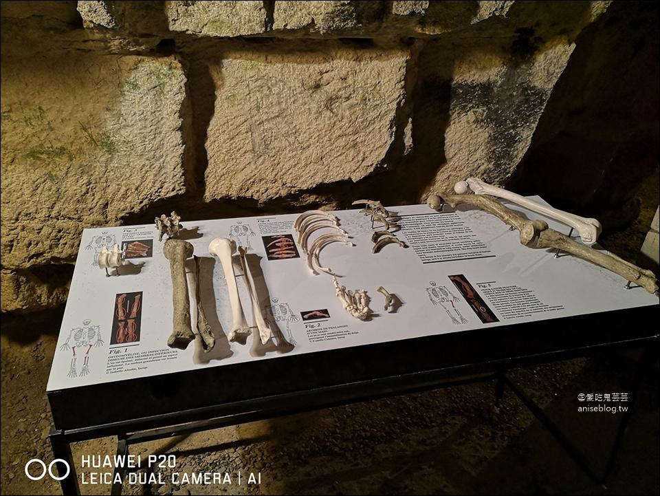 巴黎地下墓穴 | 世界上最大的死人骨頭堆放區 (14區)