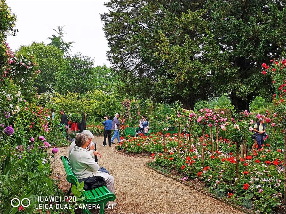 莫內花園(含交通),走進莫內的畫作-睡蓮池裡面 (圖多)
