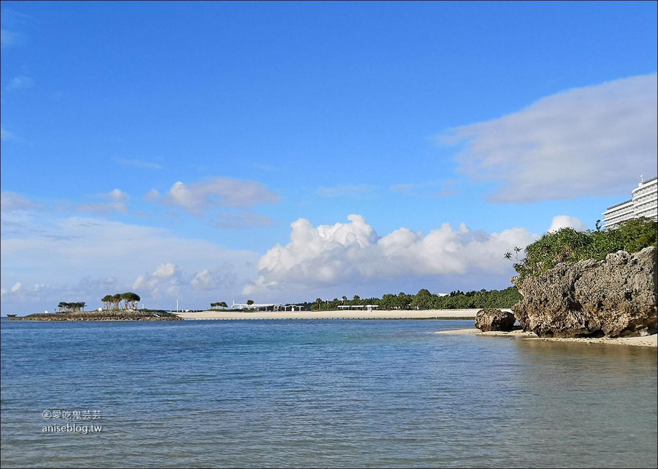 沖繩的美麗海水族館,超大鯨鯊池好療癒!