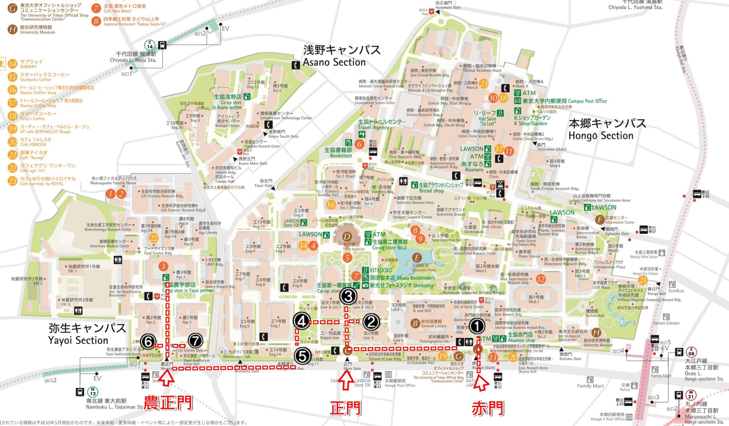 東京大學銀杏含地圖 | 本鄉校區 + 彌生校區 ( 內含東大生協食堂)