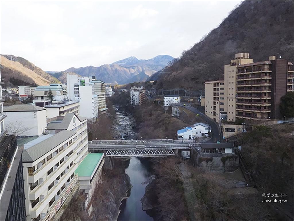 鬼怒川プラザホテル(鬼怒川廣場飯店),日幣萬元就可以住的豪華溫泉飯店