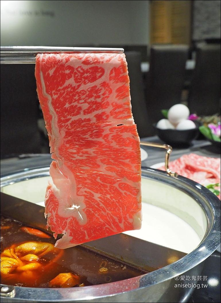 好食多涮涮屋南西店新開幕,超大肉盤始祖、活龍蝦一隻 $300超划算😍 (文末菜單)