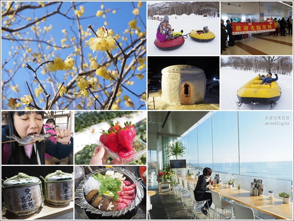 北關東 | 冬季賞梅、採草莓、釣魚、美食滑雪行程5天4夜總整理@茨城 x 櫪木 x 群馬 (圖多) @愛吃鬼芸芸