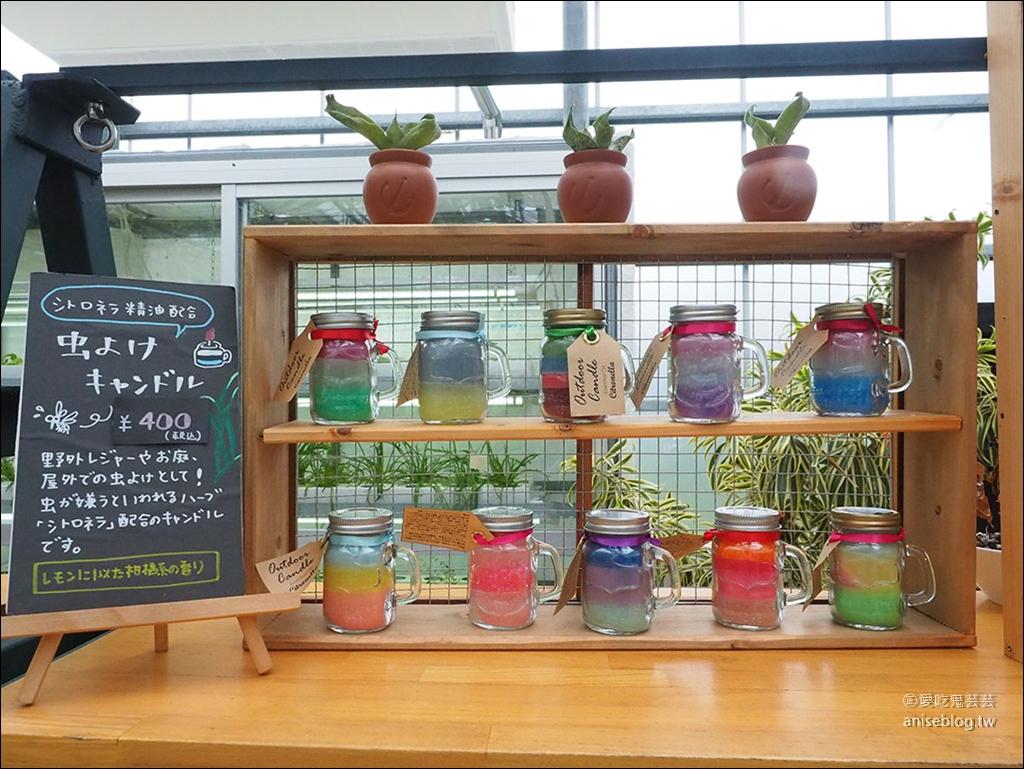 名護農業樂園 | 沖繩親子景點,美食、DIY、農場、名產購物一次滿足!