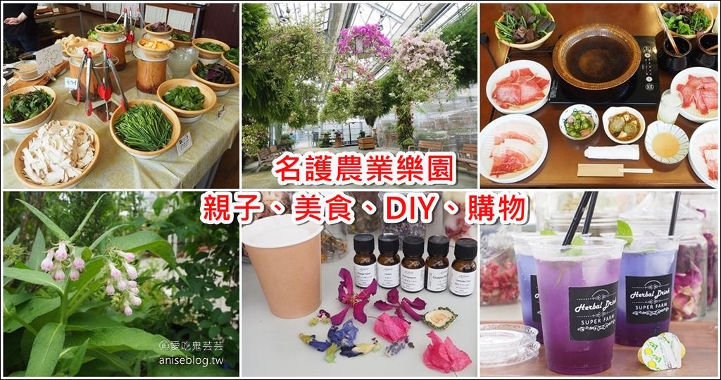 名護農業樂園 | 沖繩親子景點,美食、DIY、農場、名產購物一次滿足! @愛吃鬼芸芸