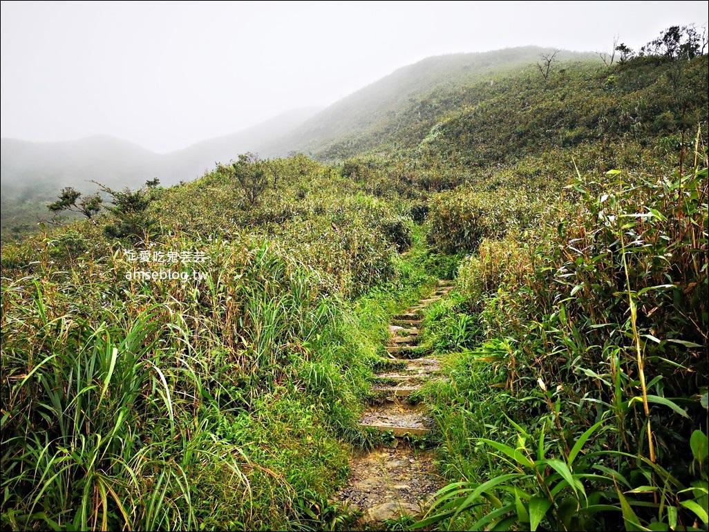 宜蘭礁溪抹茶山、聖母登山步道,遠眺龜山島俯瞰蘭陽平原絕美景緻(姊姊遊記)