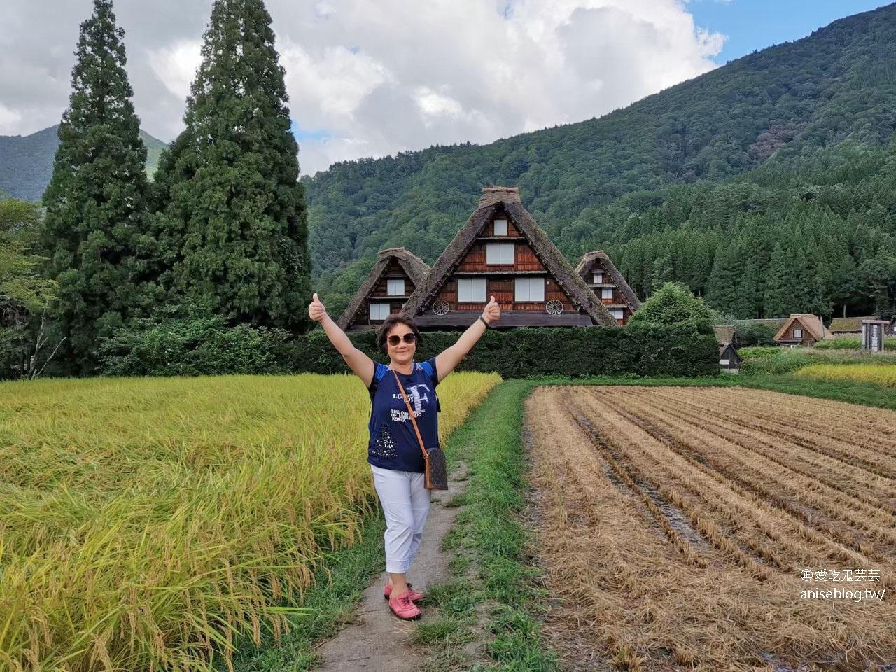 日本中部孝親之旅(上):下呂溫泉、合掌村、宮川朝市、GREEN Cooking Studio、高山老街巡禮