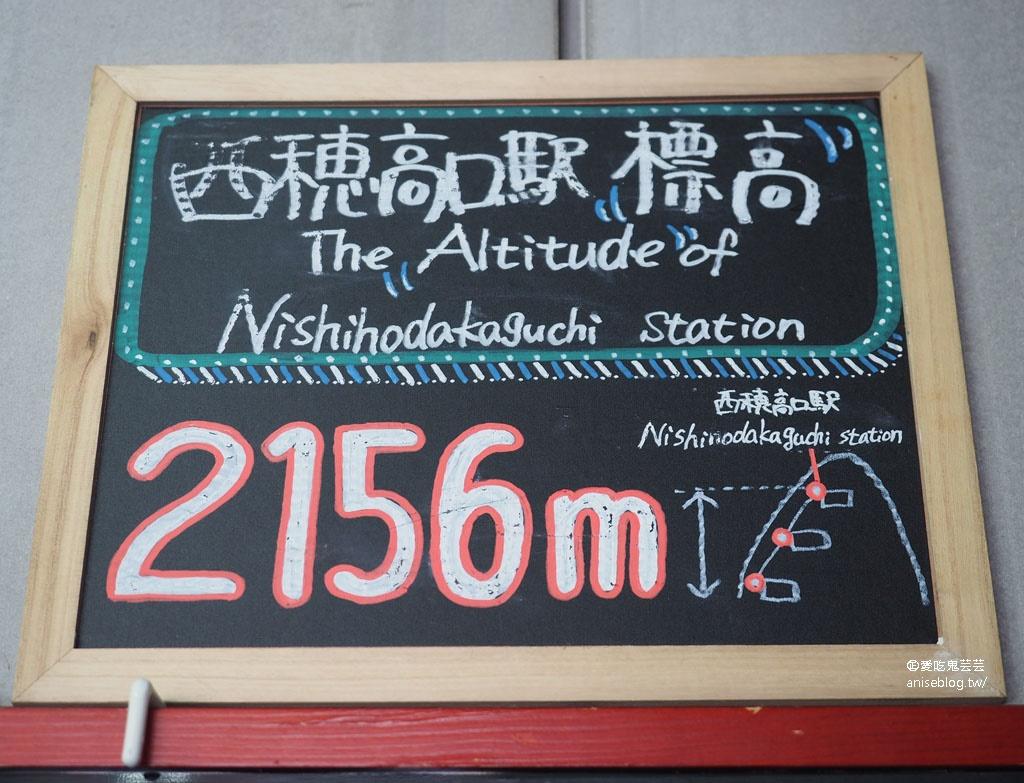 新穂高高空纜車,日本唯一雙層纜車、標高2156m的絕景 @2019日本中部孝親之旅