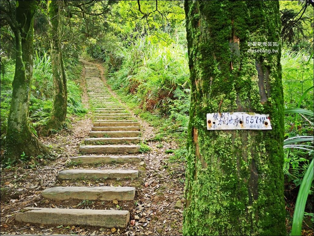姜子寮山步道,360度零死角絕美視野,基隆旅遊(姊姊遊記)