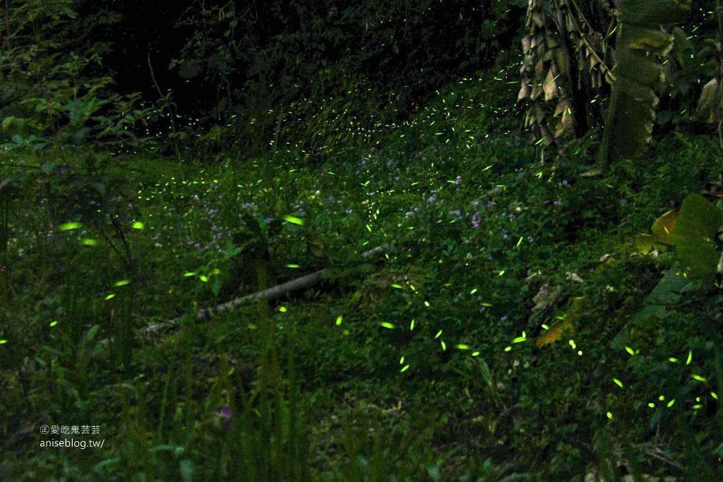 卓也小屋藏山館辦桌趣!還有油桐花和螢火蟲 😍