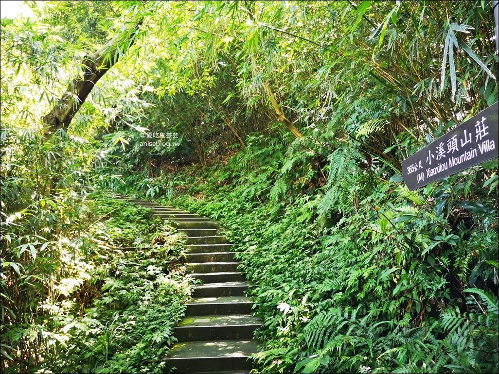 紅淡山步道,15分鐘給你整個基隆的美景,小百岳007號(姊姊遊記)