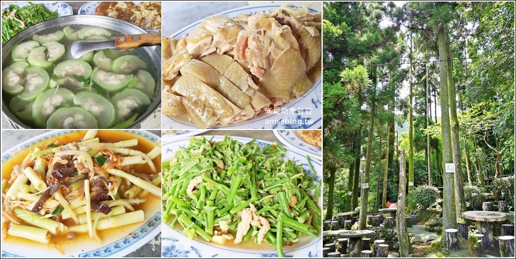 竹湖土雞城,平價山產野菜,陽明山竹子湖美食(姊姊食記) @愛吃鬼芸芸