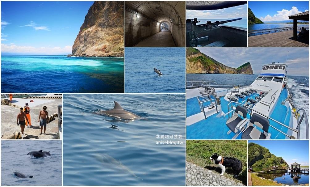 網站近期文章:宜蘭賞鯨豚+龜山島登島+牛奶海,搭雙船底遊艇蘭鯨號(姊姊遊記)