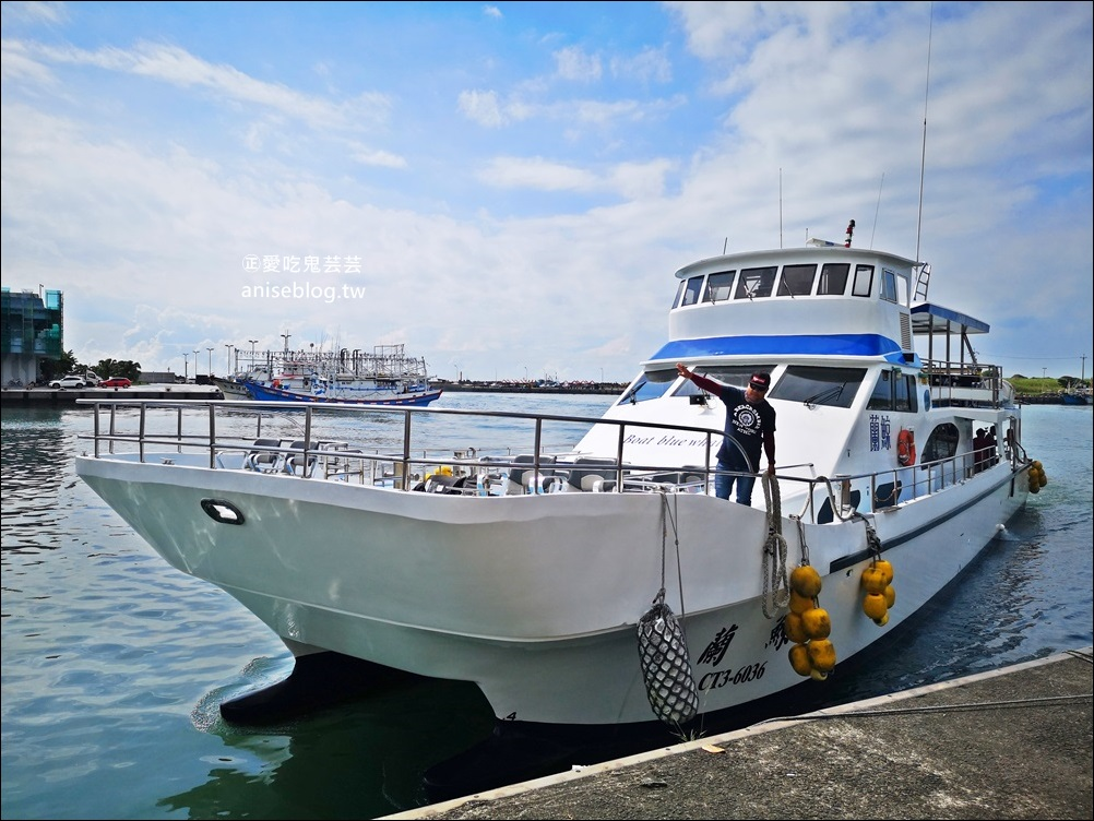 宜蘭賞鯨豚+龜山島登島+牛奶海,搭雙船底遊艇蘭鯨號(姊姊遊記)