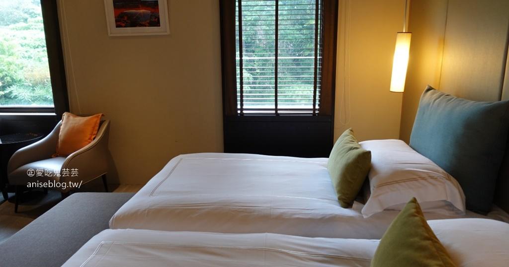 網站近期文章:北投大地酒店,2020 ITF線上旅展一泊二食超優惠!