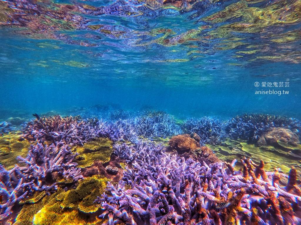 2021 春遊澎湖8天7夜總整理(上)  |  美食、行程、跳島、潛水、住宿…(圖文多,慎入)