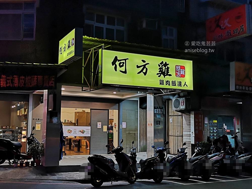何方海南雞肉飯,中和四號公園永安市場站外帶外送美食(姊姊食記)