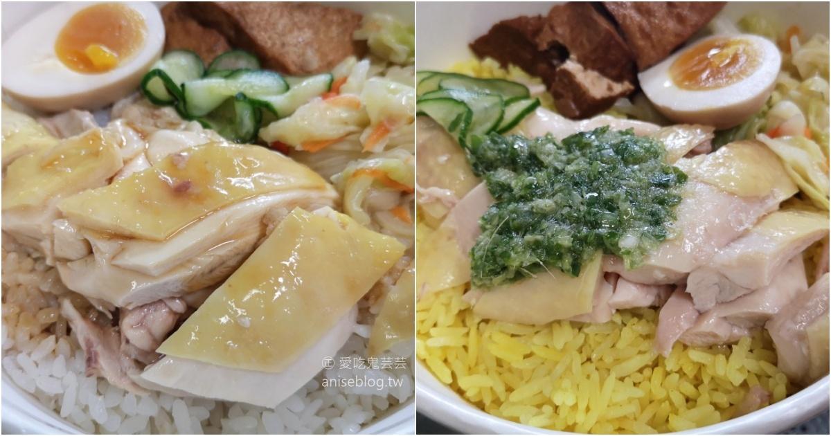 何方海南雞肉飯,中和四號公園永安市場站外帶外送美食(姊姊食記) @愛吃鬼芸芸