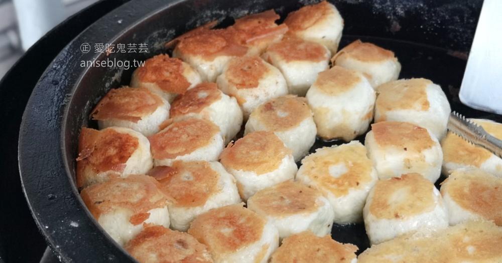 網站近期文章:有一家煎包,中和廟口銅板排隊美食(姊姊食記)